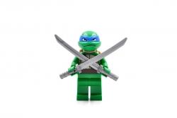 Leonardo (10669)