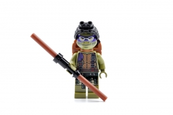 Donatello (79117)