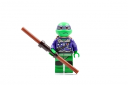 Donatello (79120)