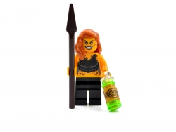 Cheetah (76097)