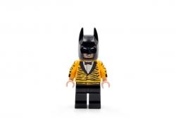 Tiger Tuxedo Batman (5004929)