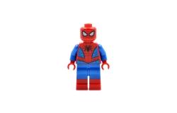 Spider-Man (76113)n