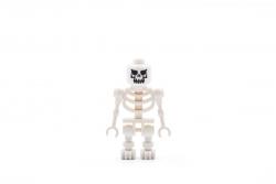 Skeleton (7621)
