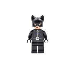 Catwoman (4493781)