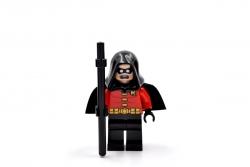 Robin (10937)