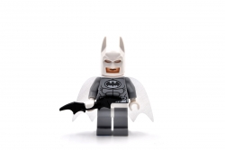 Arctic Batman (76000)