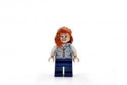 Lois Lane (76009)