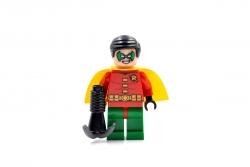 Robin (10672)