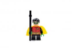 Robin (76013)