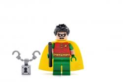 Robin (76035)