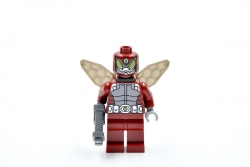 Beetle (76005)