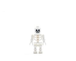 Skeleton (9473)