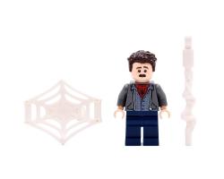 Peter Parker (76129)