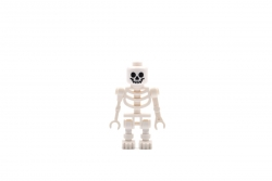 Skeleton (8089)