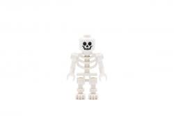 Skeleton (75005)