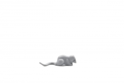 Womp Rat (75081)