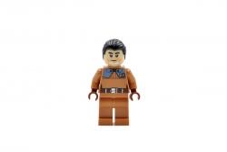 Commander Sato (75158)