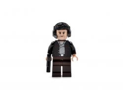Captain Poe Dameron (75202)