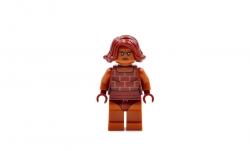 Brick (10761)