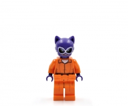 Catwoman (70912)