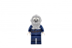Lighthouse Keeper (75903)